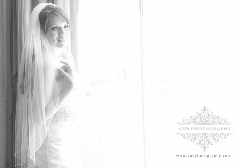 Conrad Marriott Indianapolis, Althoff's Wedding, CNE photography